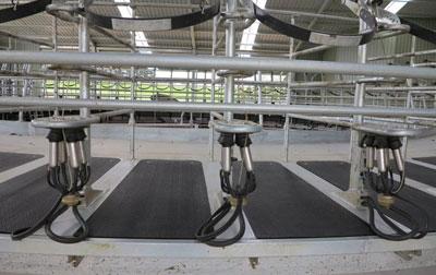 Hutchies Rotary Platform - Centrus
